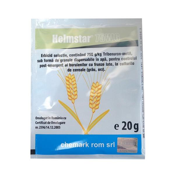 Helmstar 75 WG