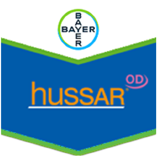 Hussar Activ OD