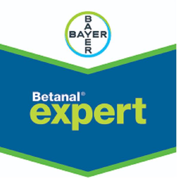 Betanal Expert