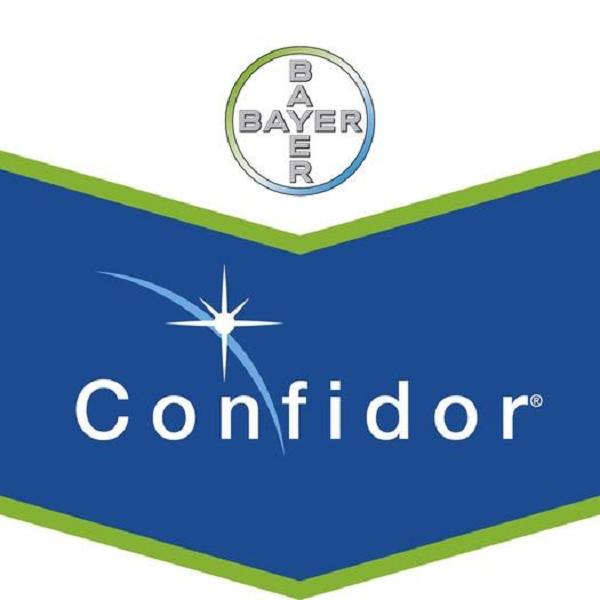 Confidor Energy