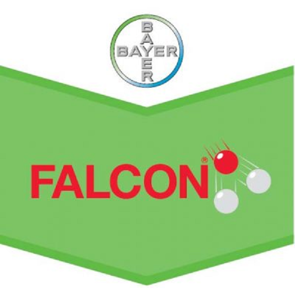 Falcon 460 EC