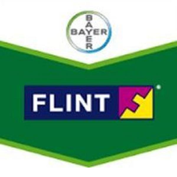 Flint Plus 64 WG