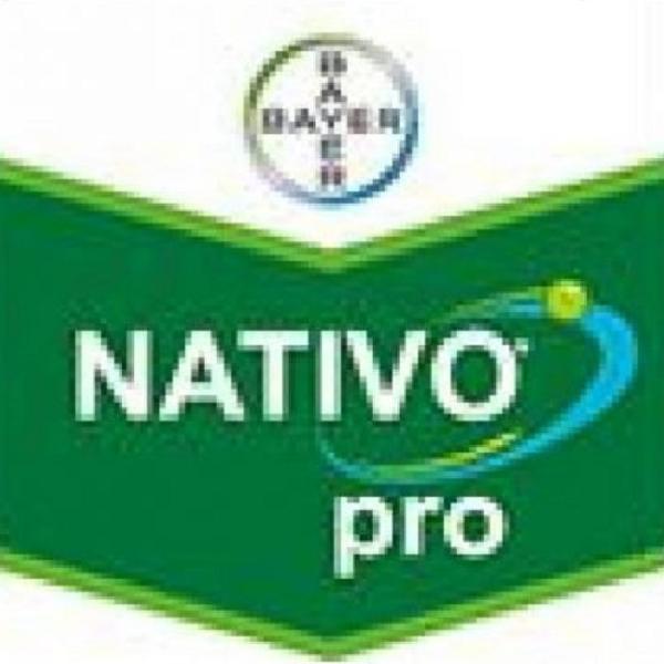 Nativo Pro 325 SC