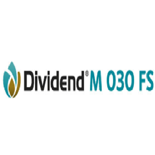 Dividend M 030 FS
