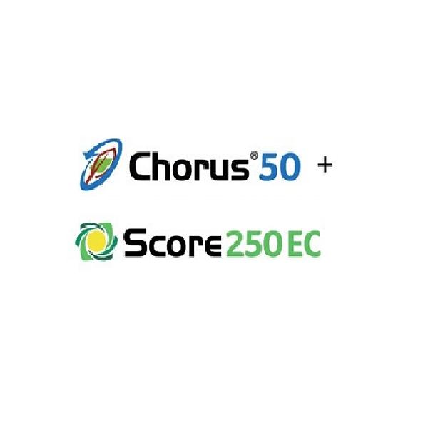 Pachet Chorus 50 WG+Score 250 EC