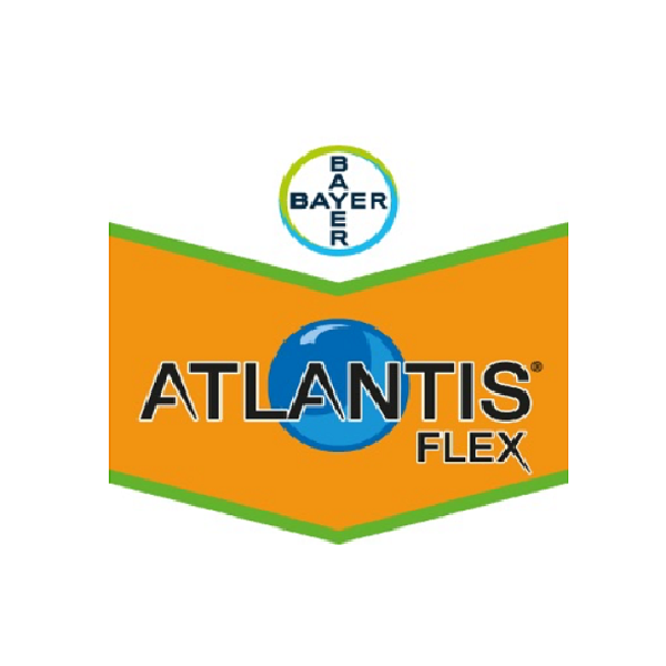 Atlantis Flex