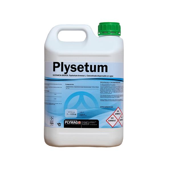 Plysetum